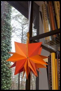 orange-lotus-bookshelves
